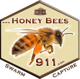 HoneyBees911 Logo